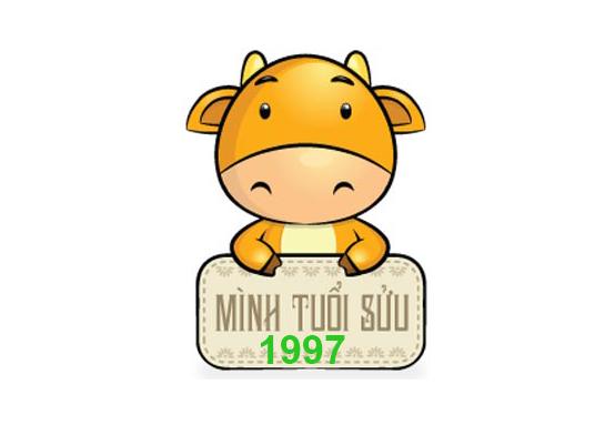 Người sinh năm 1997 có sự nghiệp ổn định