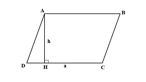 Diện tích hình bình hành bằng chiều cao nhân độ dài cạnh đáy