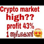 cryptocurrency market high?profit 43% above?