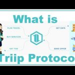 What is Triip Protocol | TIIM Token Sale  ✈✈✈ #Triip_Protocol