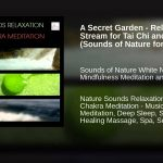 A Secret Garden – Relaxing Forest Stream for Tai Chi and Reiki (Sounds of Nature for Deep Sleep)