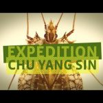 Expedition Chu Yang Sin – Discovering new insect species in Vietnam